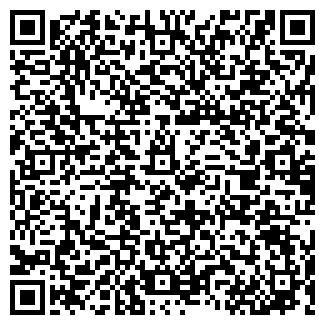 QR-код с контактной информацией организации ALEYASTONE