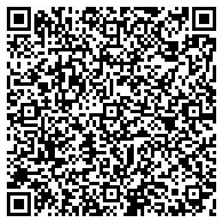 QR-код с контактной информацией организации Галкин,ИП