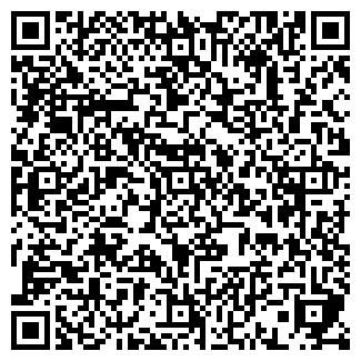 QR-код с контактной информацией организации СТС, Компания