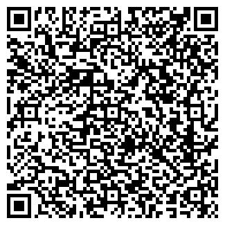 QR-код с контактной информацией организации Тлеулина, ИП