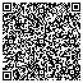 QR-код с контактной информацией организации Год Змеи