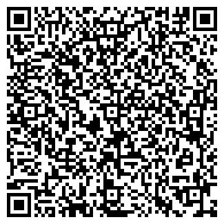 """QR-код с контактной информацией организации Интернет-магазин """"Мир фитнеса"""""""