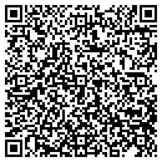 QR-код с контактной информацией организации ИП Баев