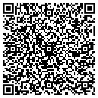 QR-код с контактной информацией организации Элемент