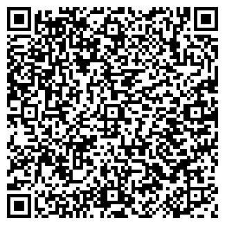 QR-код с контактной информацией организации ООО СТРОЙ АЛЕСЯ