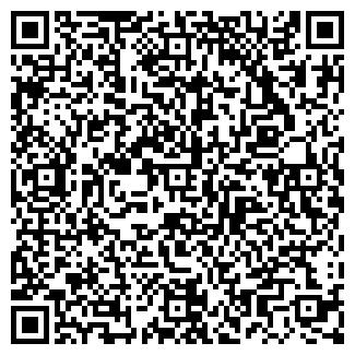 QR-код с контактной информацией организации Арго, ИП