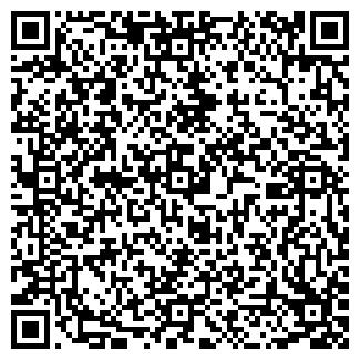 QR-код с контактной информацией организации TeploFest, Субъект предпринимательской деятельности