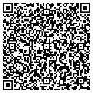 QR-код с контактной информацией организации Бимурзин, ИП