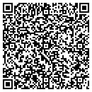 QR-код с контактной информацией организации Workle