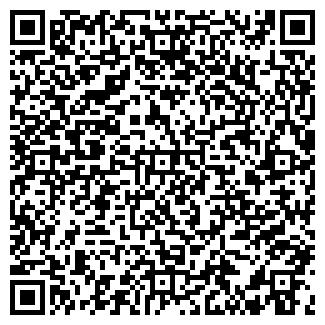 QR-код с контактной информацией организации Камины Киев, ЧП