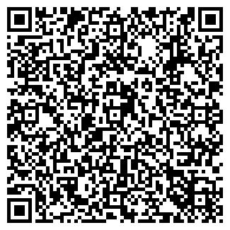 QR-код с контактной информацией организации Kaminoff, ЧП