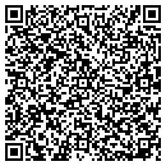 QR-код с контактной информацией организации Орланд, ЧП