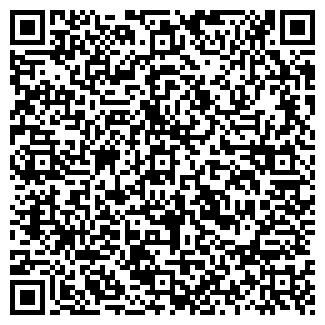 QR-код с контактной информацией организации Голинский, ЧП