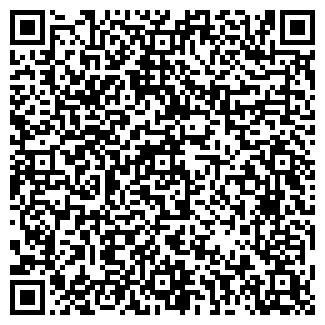 QR-код с контактной информацией организации АРЕНА БАЛАШИХА
