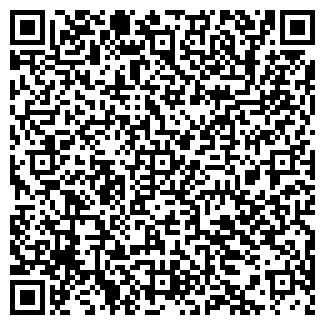 QR-код с контактной информацией организации Бамбино, ТОО