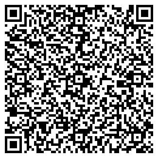 QR-код с контактной информацией организации Другая ИП Пылаев