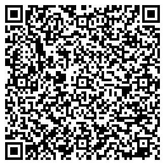 QR-код с контактной информацией организации ИП Изилайф