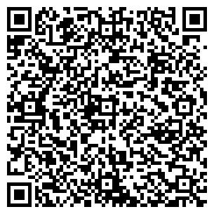 QR-код с контактной информацией организации Альфа Сегмент, ООО