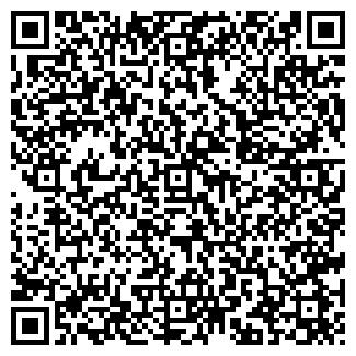 QR-код с контактной информацией организации ИП Башун