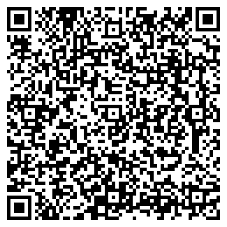QR-код с контактной информацией организации Строй DELUXE (делюкс), ТОО