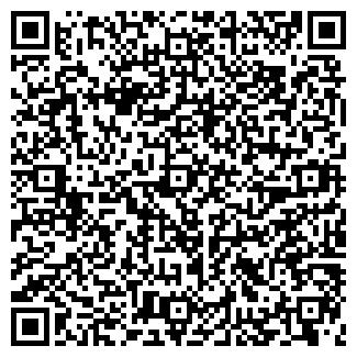 QR-код с контактной информацией организации Ника, ИП