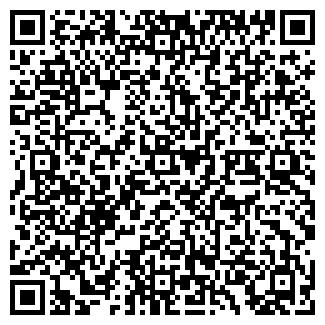 QR-код с контактной информацией организации Литвинова, ИП