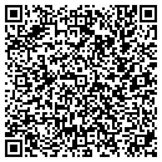 QR-код с контактной информацией организации АВТОБУСНЫЕ ЛИНИИ