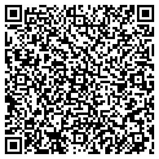 QR-код с контактной информацией организации ИП Ни Д.В.
