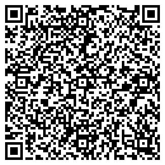 QR-код с контактной информацией организации Субъект предпринимательской деятельности Novodor