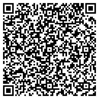 QR-код с контактной информацией организации Эмиль, ИП