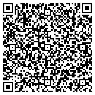 QR-код с контактной информацией организации Карасай, ИП