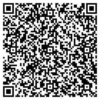 QR-код с контактной информацией организации ТОО Басит и Ко