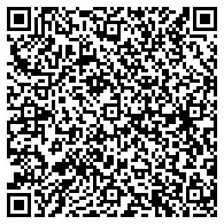 QR-код с контактной информацией организации ДревоСтрой(ДревоБуд), ЧП