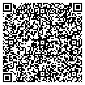 QR-код с контактной информацией организации LITOKOL, ТОО