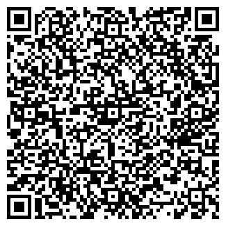 QR-код с контактной информацией организации stroilendvsem