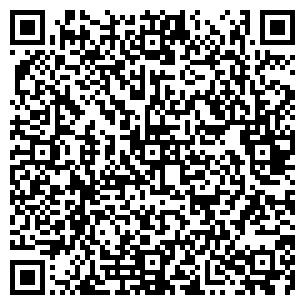 QR-код с контактной информацией организации Борвин, СПД