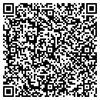 QR-код с контактной информацией организации borles