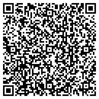 QR-код с контактной информацией организации Субъект предпринимательской деятельности ИП Сафаров Р. Н.