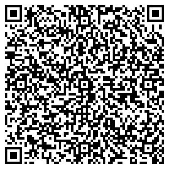 QR-код с контактной информацией организации Зебра Колор, ИП