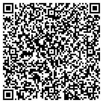 QR-код с контактной информацией организации Nice automat, Компания