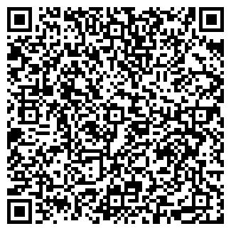 QR-код с контактной информацией организации megaokna