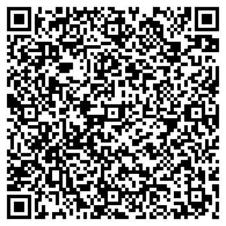 QR-код с контактной информацией организации Стиль, БК