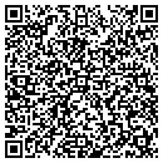QR-код с контактной информацией организации Алко, ЧП