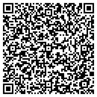 QR-код с контактной информацией организации СТВ, ООО