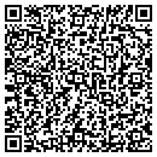 QR-код с контактной информацией организации ИП Proson
