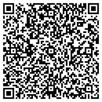 QR-код с контактной информацией организации Фаина, ИП
