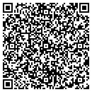 QR-код с контактной информацией организации ИП Толыбаев