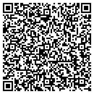 QR-код с контактной информацией организации ООО Новая тема