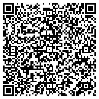 QR-код с контактной информацией организации Арко (Arko), ИП