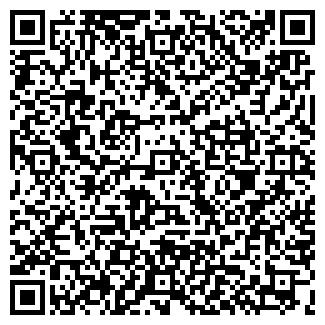 QR-код с контактной информацией организации Снабик,ИП